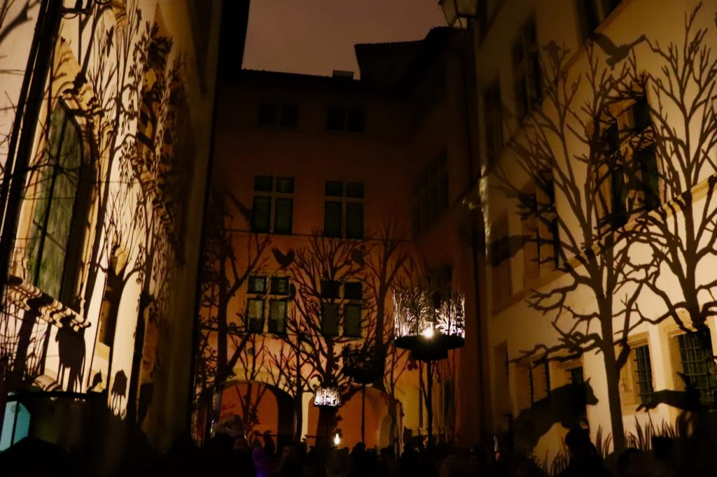 Shadows of trees and animals projected on the walls of the musée Gadagne courtyard.
